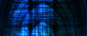 Arthur van der Zaag: Windows of Light