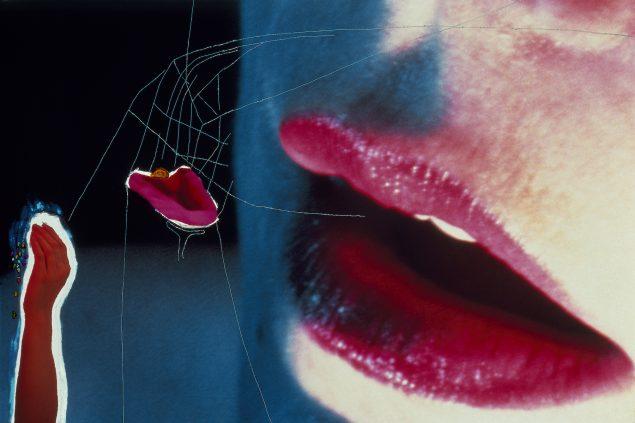 Agneta Werner, Identification I-VI, 1988